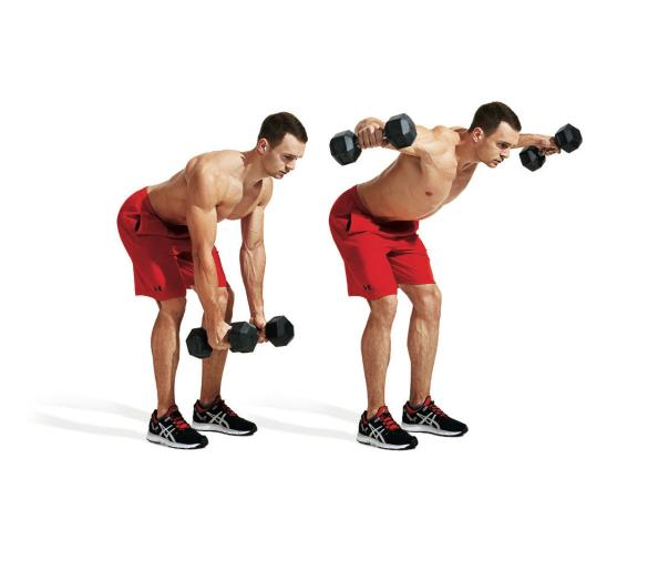 muskelstruktur des menschen